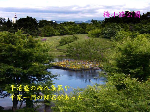 201011260_kamakuragenji