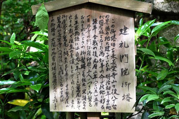 2011.5.23 建礼門院徳子落飾の寺・・・京都・長楽寺はすずやかな新緑の境内でした: 孔雀のいる庭